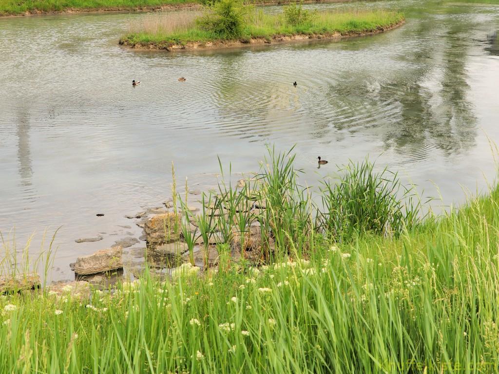 Teich am Stellplatz