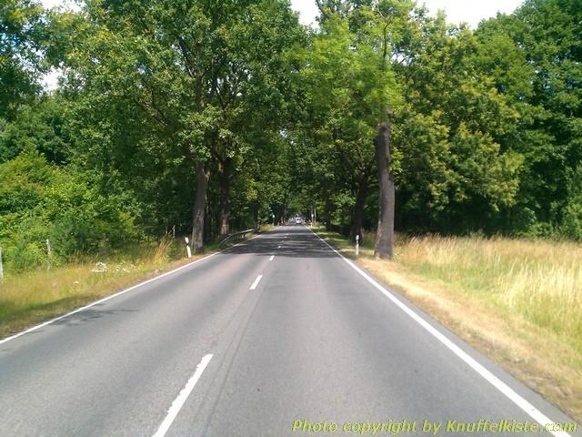 so langsam sieht es nach Spreewald aus! Baumalleen...