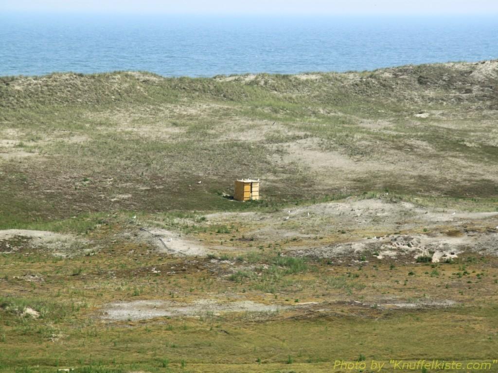 Bienenstock ganz einsam!