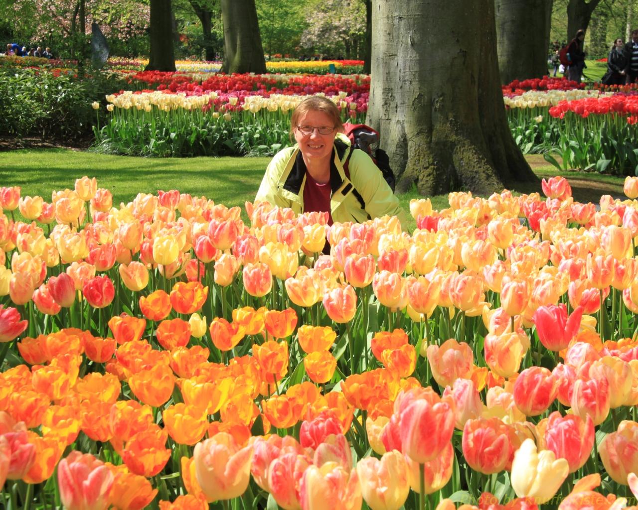 Gabi und das Tulpenfeld