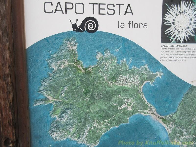 Karte der Region am Capo Testa