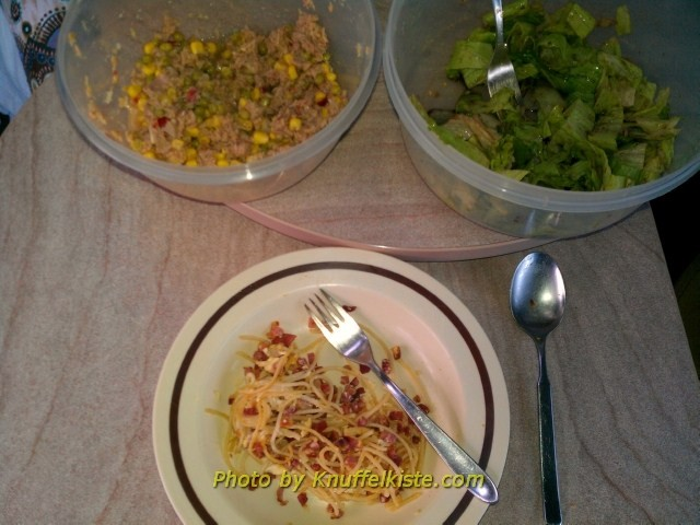 Heutiges Abendessen-Spaghetti mit Sosse und grüner Salat und Thunfischsalat