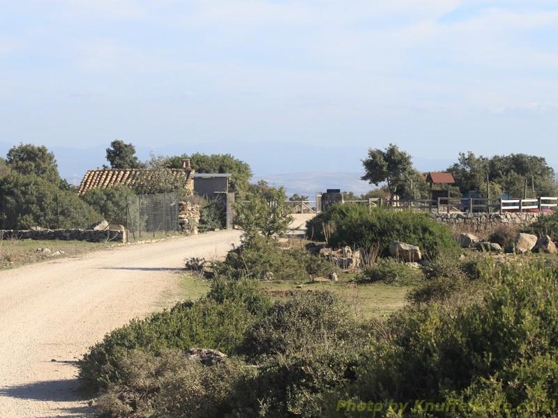 Blick zurück zum Eingang des Parks