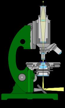 Durchlichtmikroskops