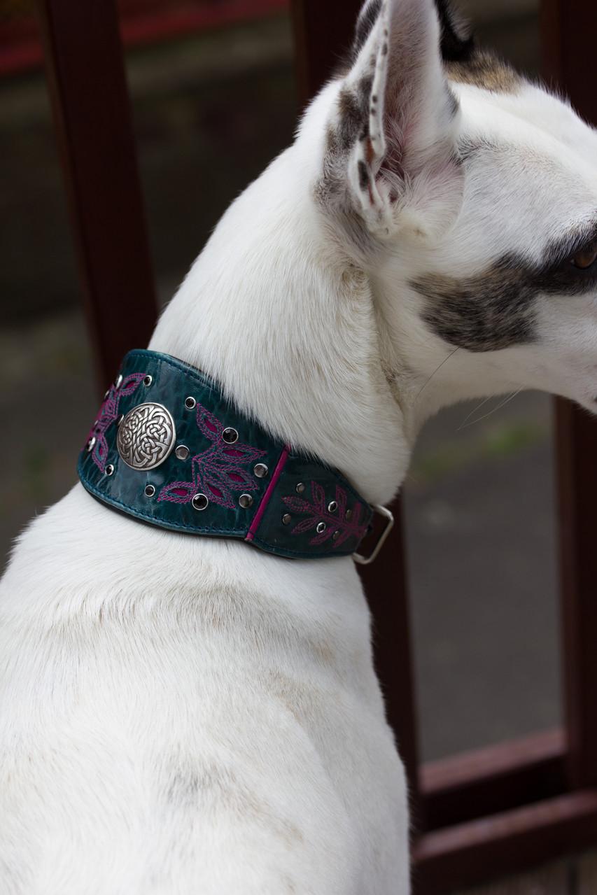 unsere MO hat auch ein Halsband abgegriffen :)