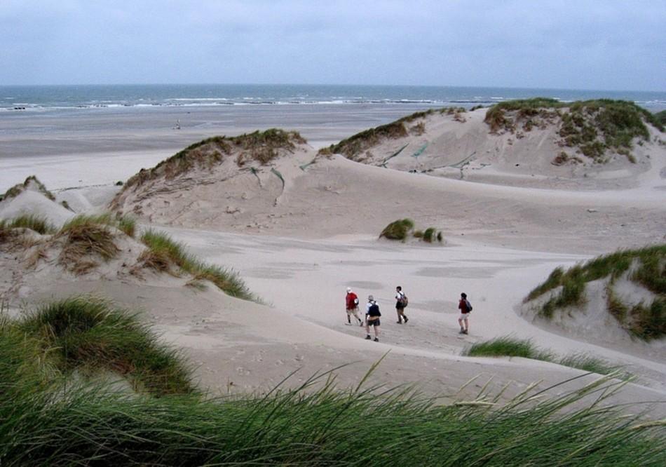 balade dans les dunes de la baie de somme