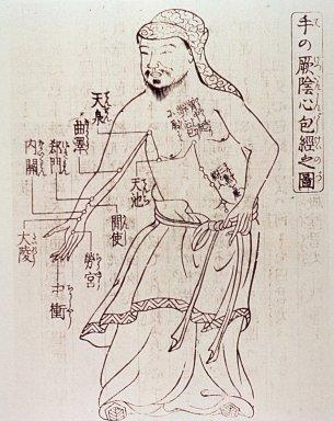 Corin Koster TCM Akupunktur historische Zeichnung