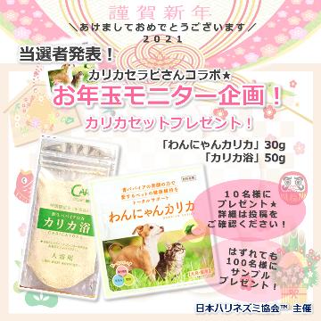 #お年玉モニター企画 当選者発表!