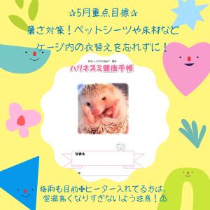 5月重点目標★ハリネズミ健康手帳