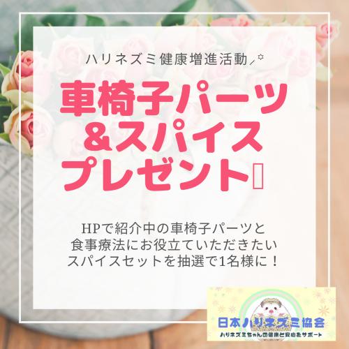 【応募締切ました!4/20】車椅子パーツ&スパイスセットプレゼント!