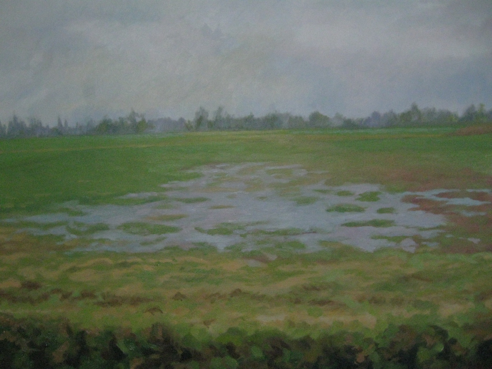 "Oil on Canvas   ""Guaimaral Landscape"""