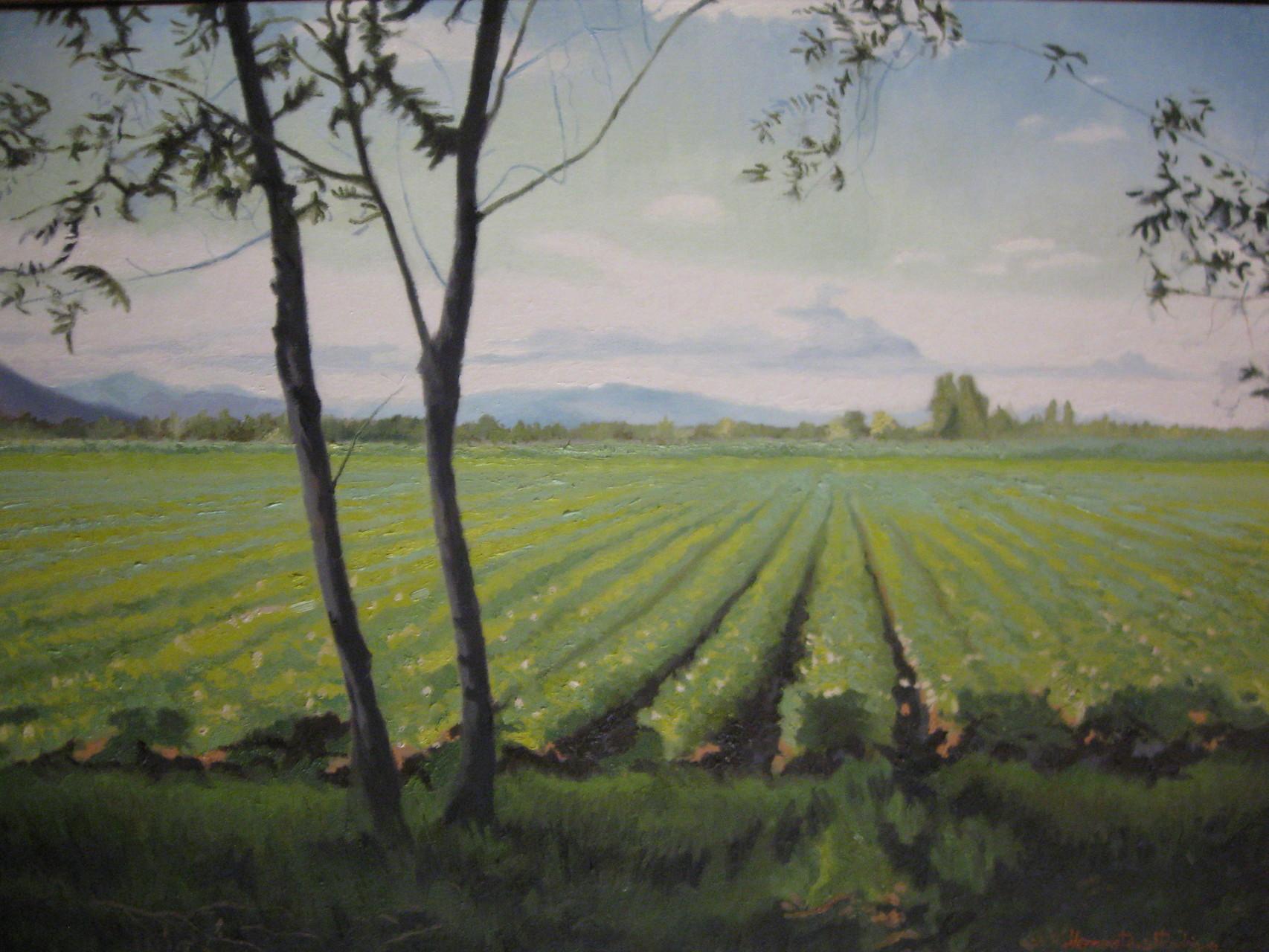 "Oil On Canvas   ""Infinite"""
