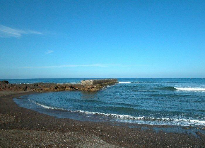 Strand Palm Mar