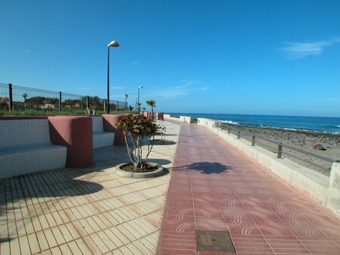 Promenade Palm Mar