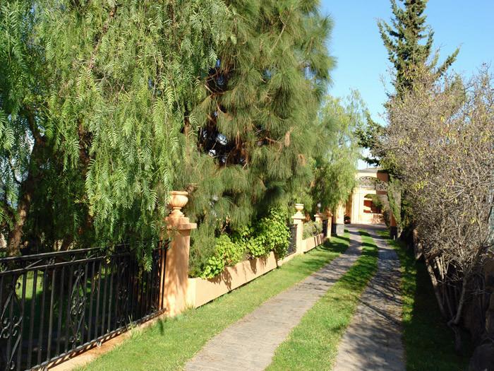 Mandelbäumen gesäumte Zufahrt zur Villa Alma auf einem Grundstück von ca. 4.0000qm.