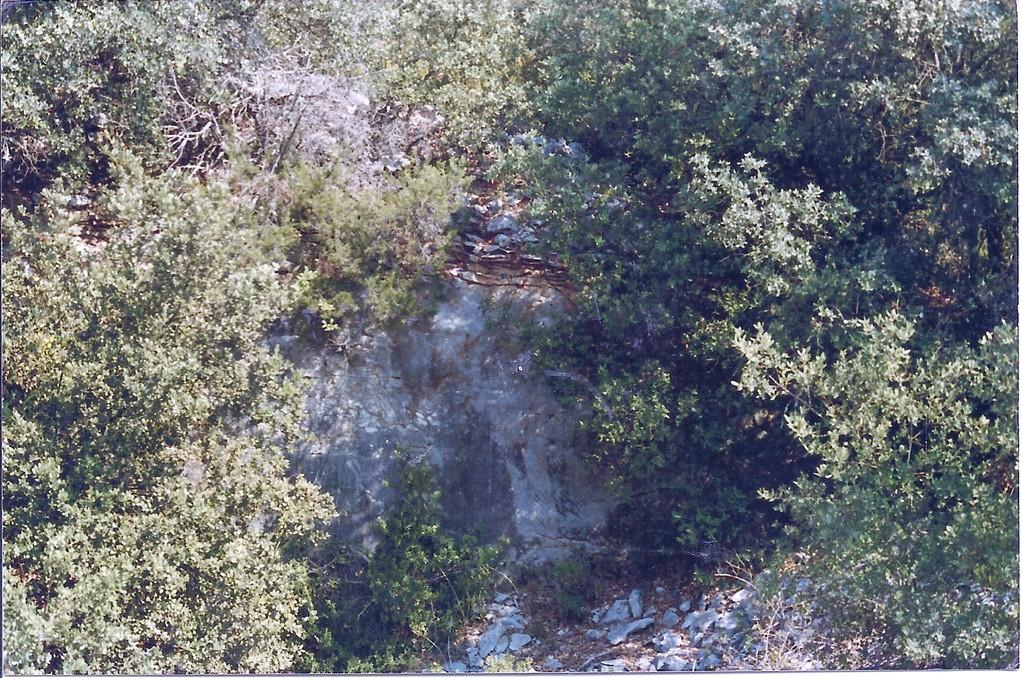 La Perrière:Carrière recouverte de végétation