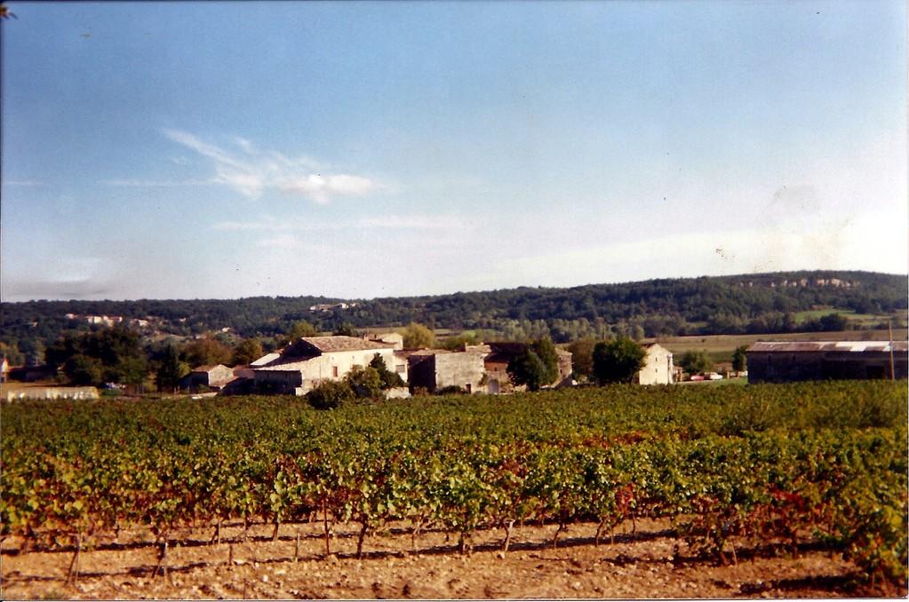 Lauron en 1995