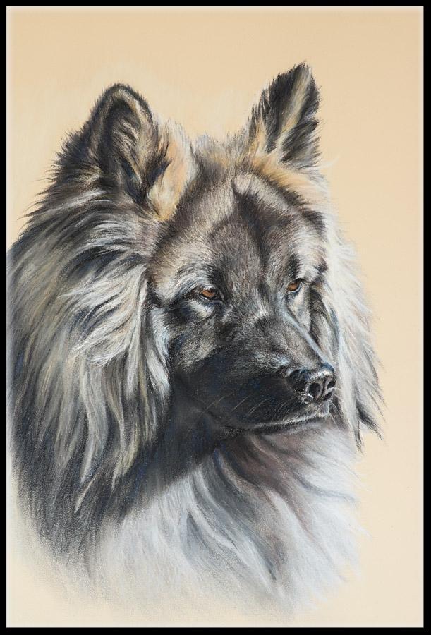 Hundezeichnung, Tierzeichnung, Hundemalerei, Tiermalerei, Eurasier, Hundeportrait, Zeichnung, Pastellzeichnung