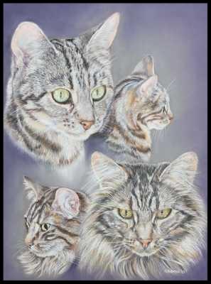 Katzenzeichnung, Tierzeichnung, Katzenmalerei, Tiermalerei, Tigerkatzen, Katzenportrait, Zeichnung, Pastellzeichnung