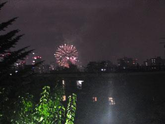 天神山緑地公園から望む道新花火大会