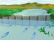 縄文時代の木製柵想像図(石狩市公式ホームページより)
