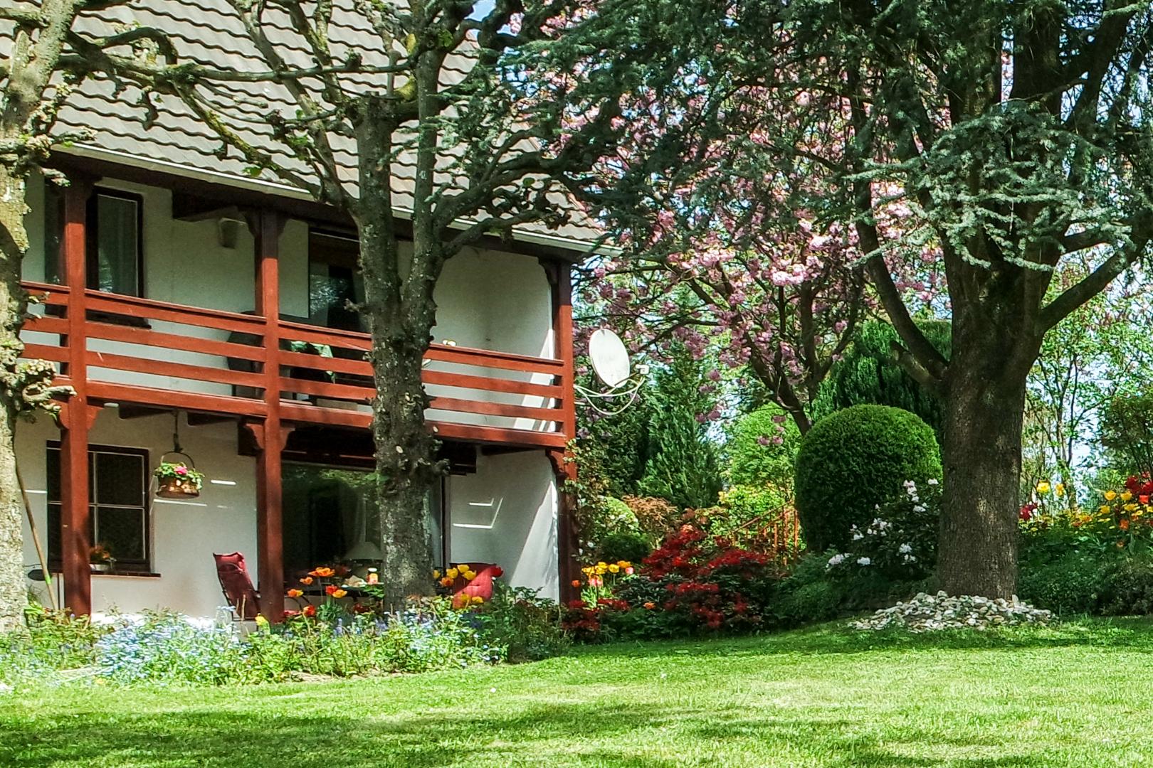 der untere Garten mit Blick zur Terrasse....