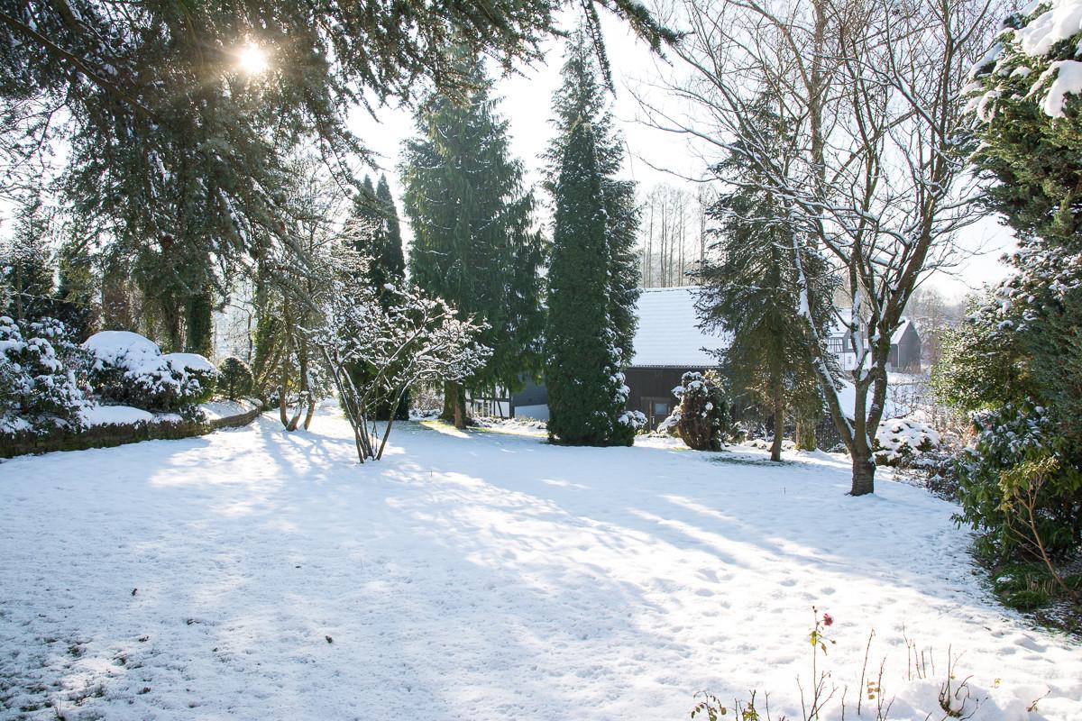Blick in den Wintergarten.......