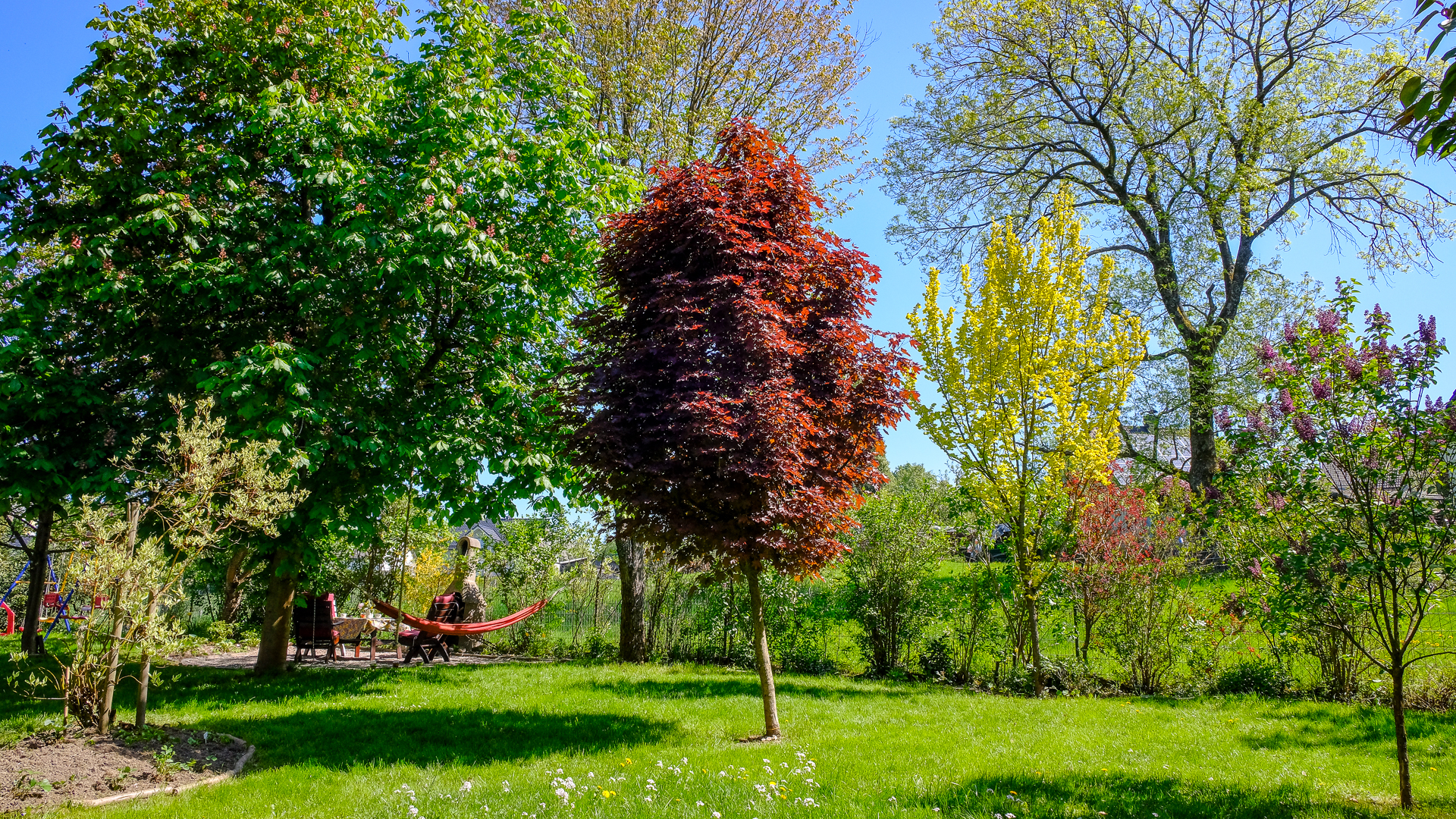 die obere Wiese im Frühling mit viel Platz zum Toben und Spielen