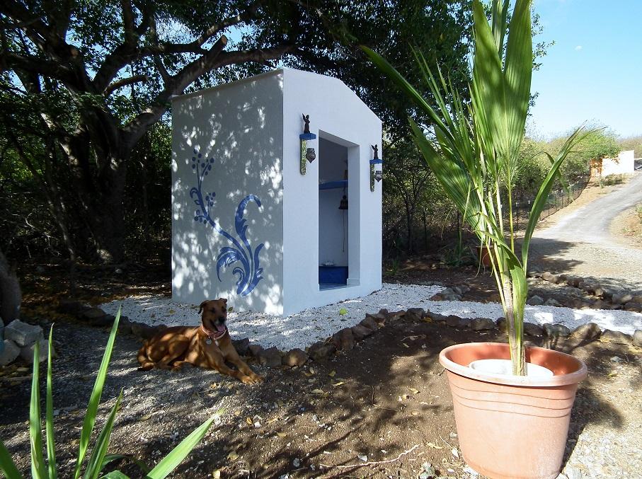 Tropischer Garten Don Genaro 1
