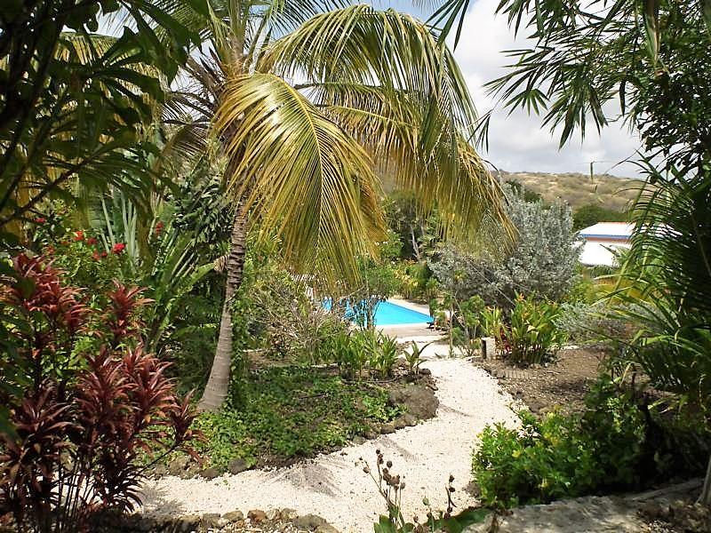 Tropischer Garten Don Genaro 3