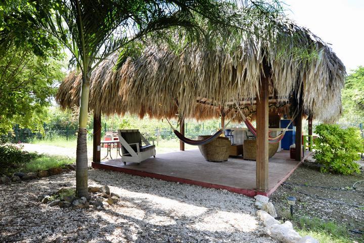 Tropischer Garten Don Genaro 27