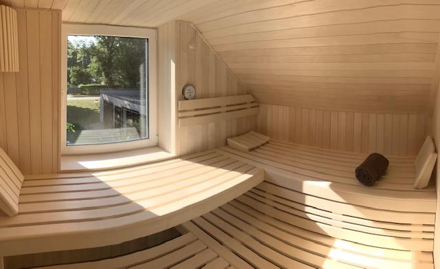 Sauna (Finnisch oder Bio) mit Fenster und Kamin