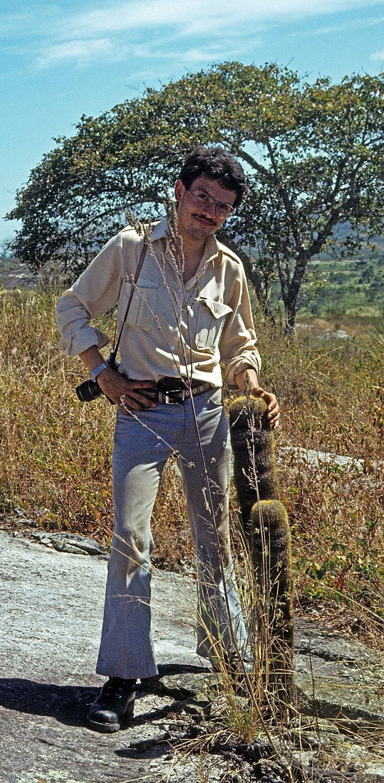 Coleocephalocereus aureus ssp. elongatus, Minas Gerais 1979