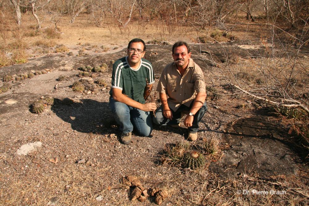 with Marlon Machado in habitat of Discocactus cephaliaciculous