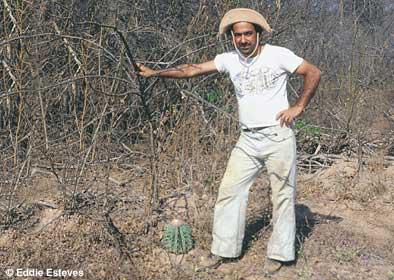 Caatinga, Melocactus, Bahia ca 1975