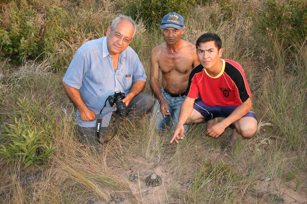 Discocactus hartmannii ssp. patulifolius, Mato Grosso do. Sul 2007