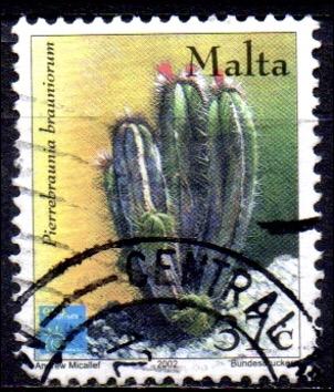 37 Cent, Malta 2002