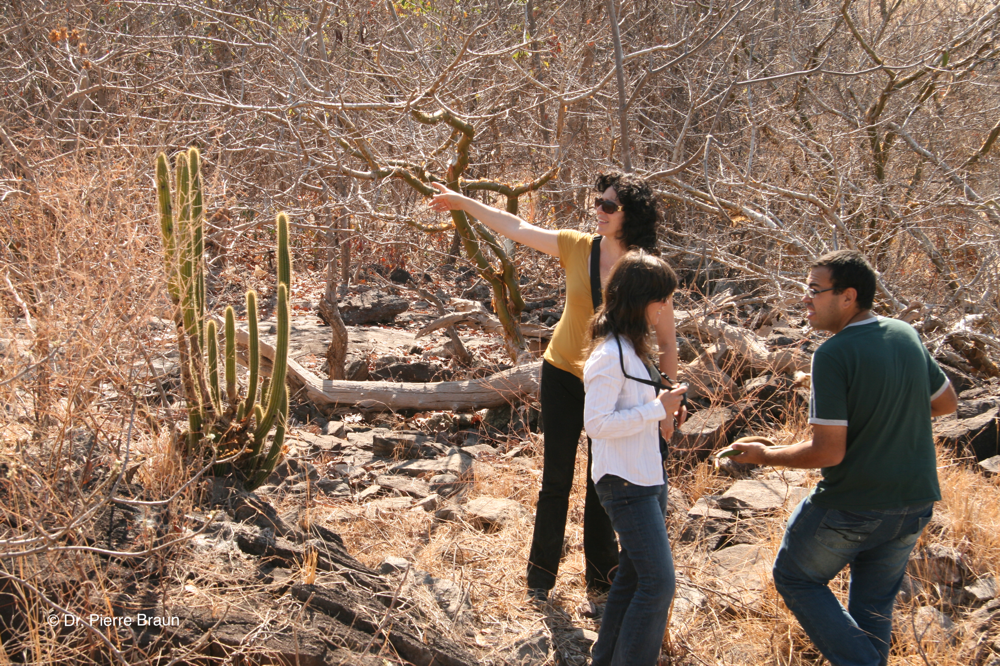 with Dr. Daniela Zappi, Dr. Barbara Goettsch and Marlon Macado in habitat of Pilosocereus rizzoanus, Goias 2010. - Copyright Dr. Pierre Braun