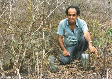Uebelmannia pectinifera, Minas Gerais 1983