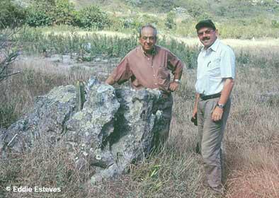 Pierrebraunia brauniorum, Minas Gerais 2002
