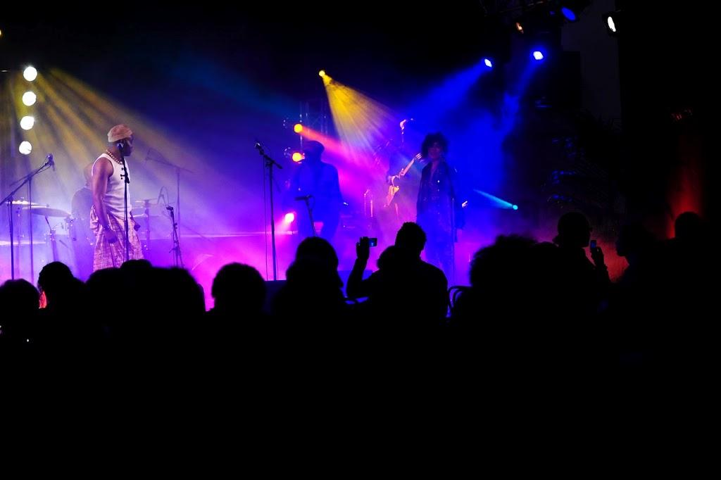 Les Jumeaux de MASAO (Masao Masu) en concert  à Villeneuve le roi  . Photo : Julien Pagnol
