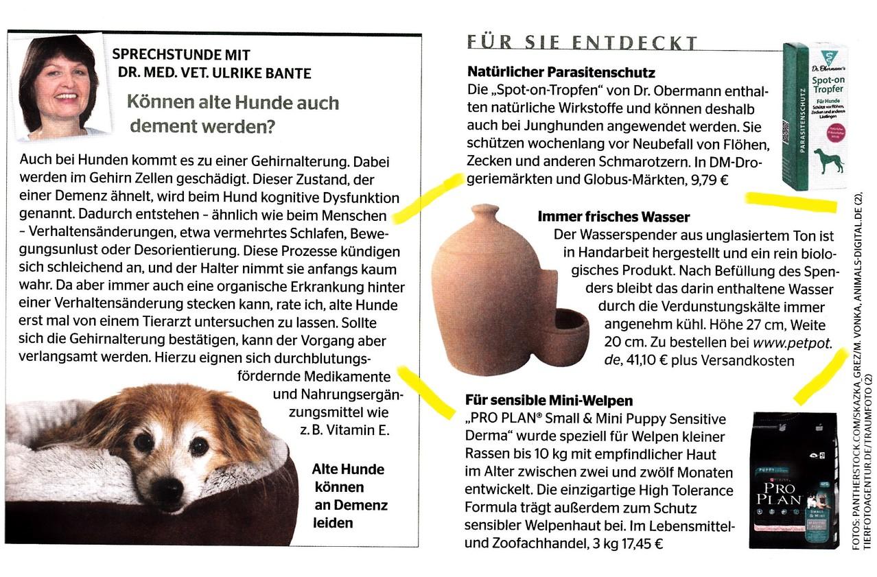 """Seite 43 - """"Ein Herz für Tiere""""  Ausgabe 9/13"""