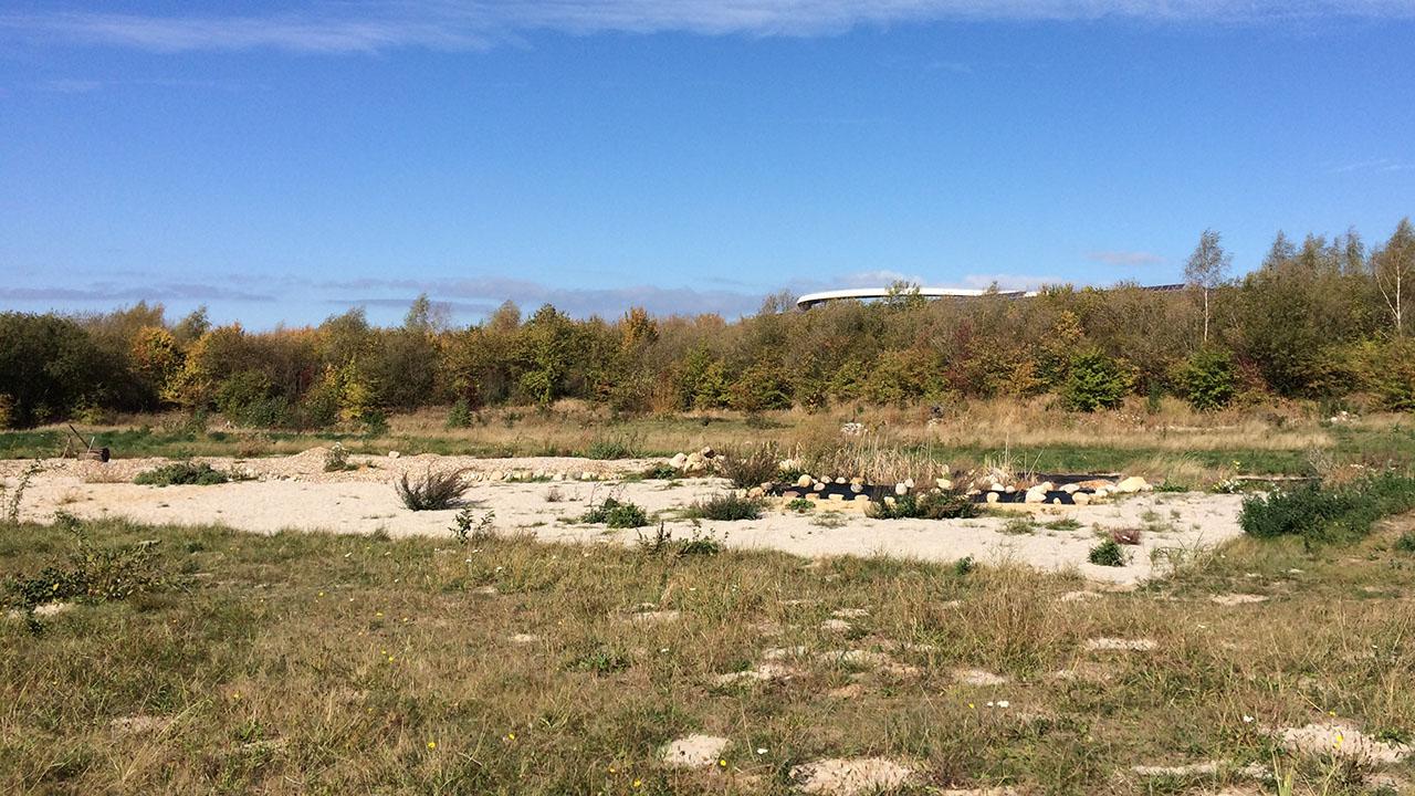 """Blick über die betreute Fläche, im Hintergrund der """"Horizontweg"""".     Foto: Lea-Carina Mendel"""