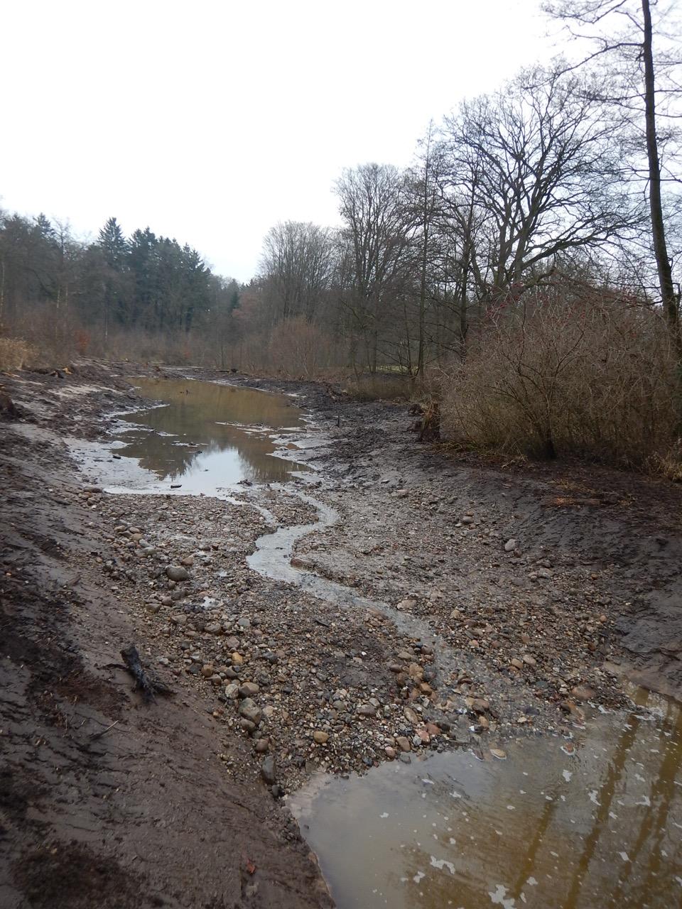 Abflussrinne der Flutmulde Anfang Januar 2017