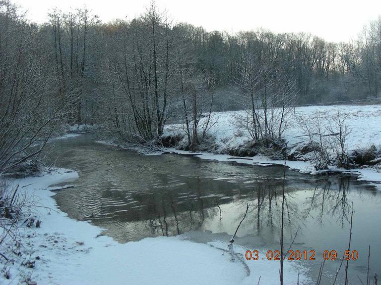 Unsere im Herbst 2011 gebaute Rausche unterhalb der Straße Trillup am 03.02.2012.