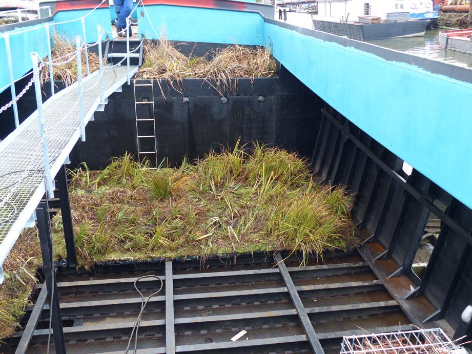 Die ersten Vegetationsmatten werden bereits in der Werft in die Schute eingebracht (Foto: M. Maaß).