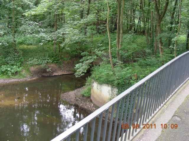 Beteiligungsstrecke: Neben der Langwischbrücke mündet ein großes Regensiel. Im Umfeld des Sieleinlaufes wäre genug Platz, um das Straßenabwasser zu filtern, bevor es in die Alster fließt.