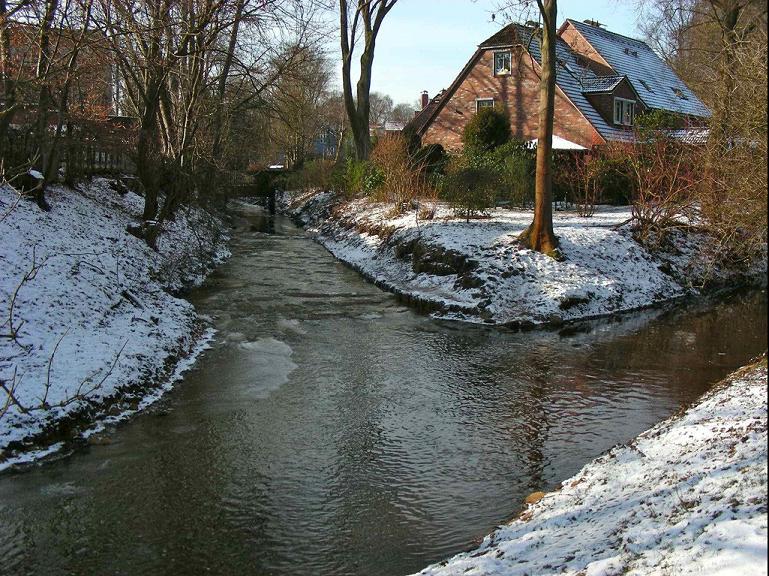 Wo die Kollau in die Tarpenbek mündet, fallen zwei Dinge auf: die Kollau (links) ist regelmäßig trüber als die Tarpenbek. Die Kollau friert aber - trotz kräftiger Strömung - früher zu.