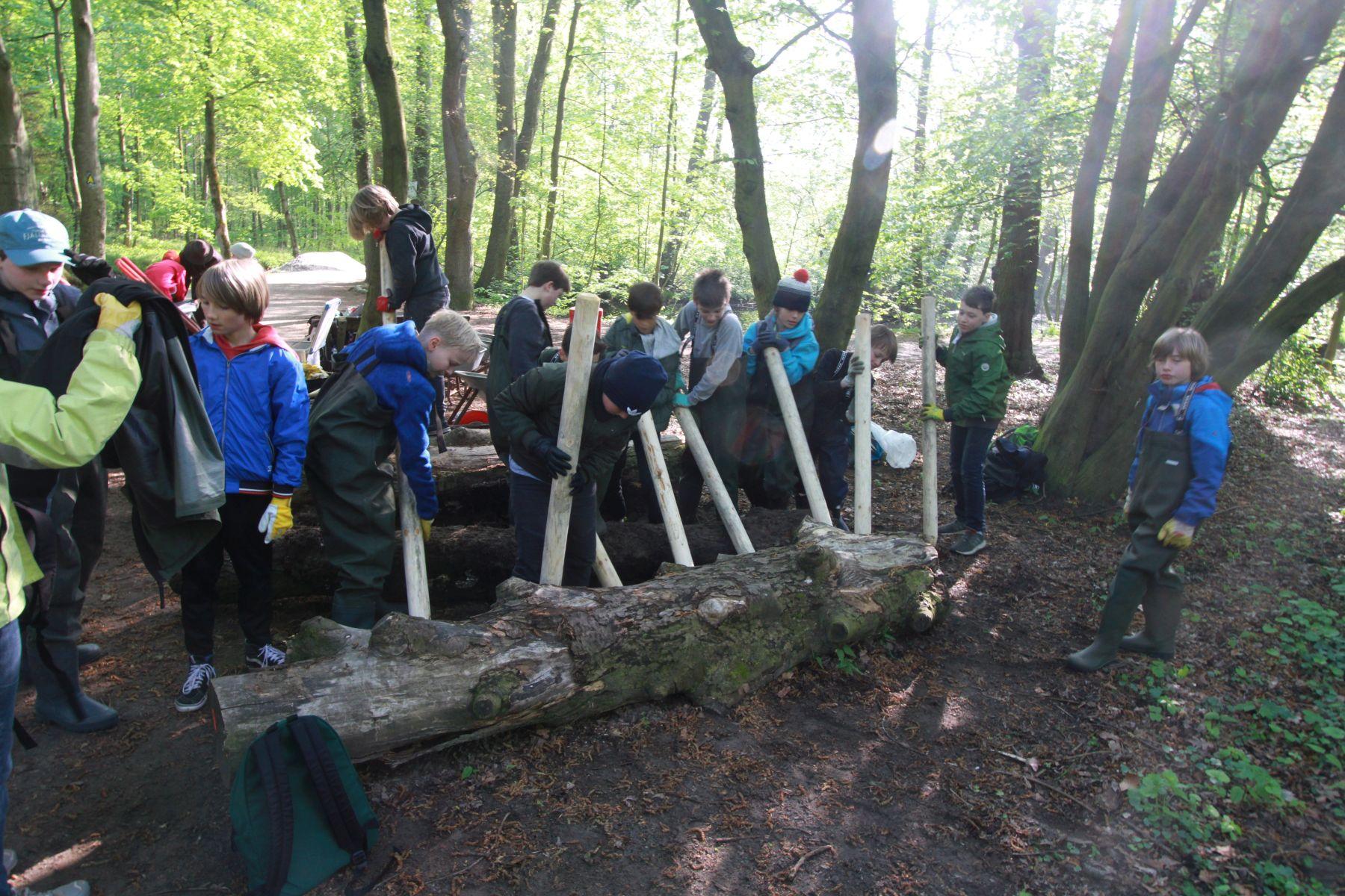 Die dicken Baumstämme lagen schon eine Wele vor Ort und musste mit vereinten Kräften weggehebelt werden (Foto: A. Lampe).