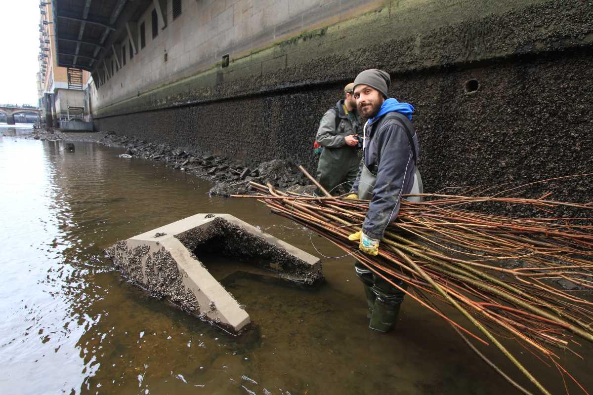 Um den Stromkokons als Unterschlupf aufzuwerten, stopfen wir Holzfaschinen in den Hohlraum des Kokons (Foto: A. Lampe).